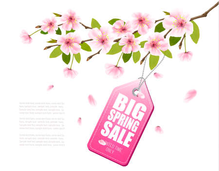Spring sale background with a pink blooming sakura and discount tag.