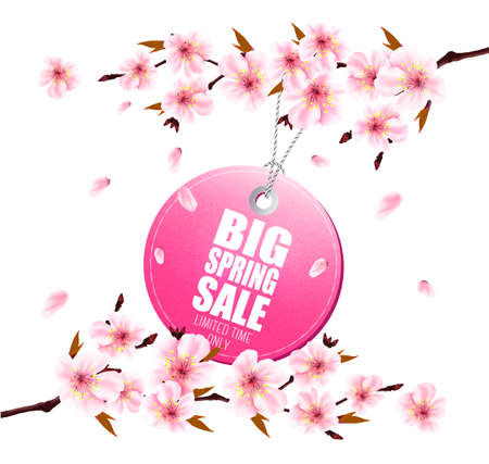 Spring sale background with a pink blooming sakura and discount tag. Vector