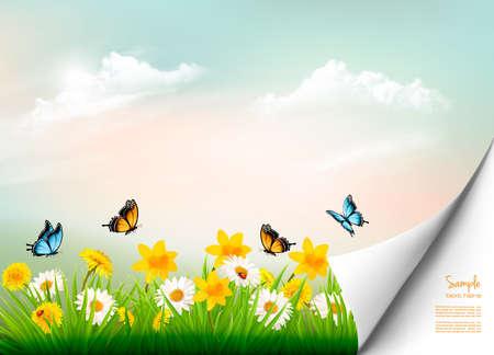 Frühlingsnaturhintergrund mit Gras und Blumen und Kopienraum. Vektor.