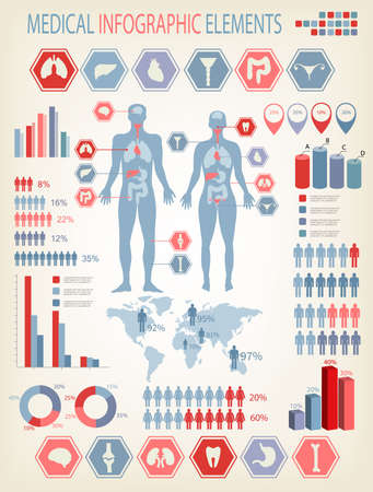 Big set of medical infographics elements. Human body with internal organs.