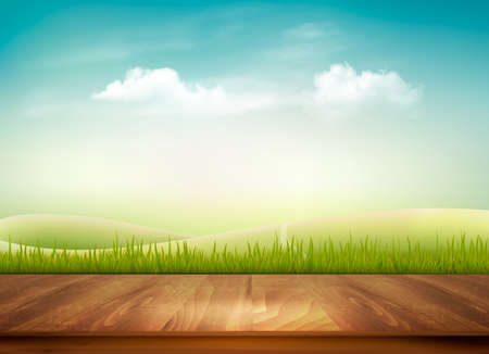 Nature background with wooden deck in front of green grass and blue sky, Иллюстрация