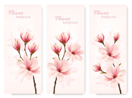 Set of nature flower magnolia banners.