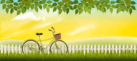 Nature summer meadow landscape with a bicycle. Vector.