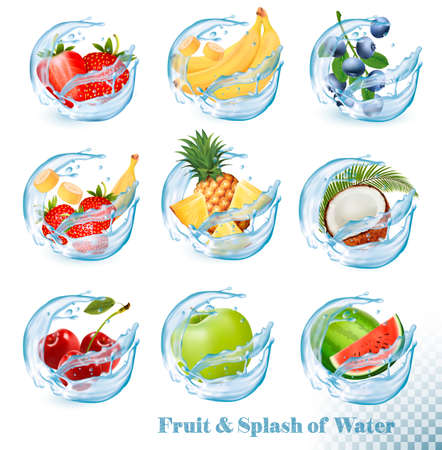 Big collection of fruit in a water splash icons. Vector Illustratie