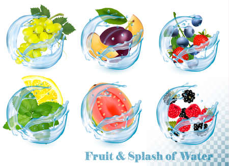 Big collection of fruit in a water splash icons.