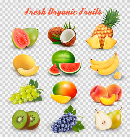 Collection of fruit and berries. Watermelon, honeydew, guava, coconut, pineapple, grapes, mango, peach, pear, banana and kiwi.