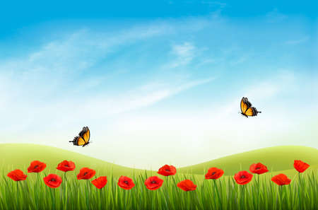 Summer nature landscape background with red poppies and blue sky. Vector.