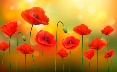 Summer sunny landscape background with a red poppies. Vector.