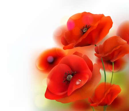 Red Poppy flower background. Vector illustration  イラスト・ベクター素材