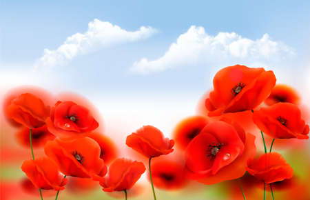 Summer Nature Background with Red Poppy flowers and Blue Sky. Vector illustration