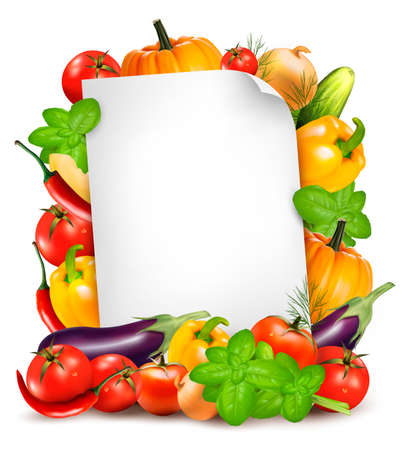 Fresh vegetables and food ingredients and white paper sheet. Recipe book concept. Copy space for text. Vector