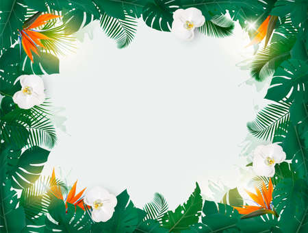 oliday Background With Exotic Palm Leaves And White Orchids. Vector