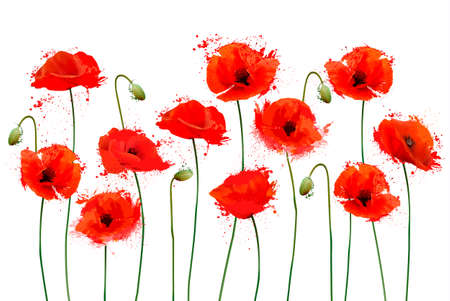 Red Poppy flowers background. Vector illustration 일러스트