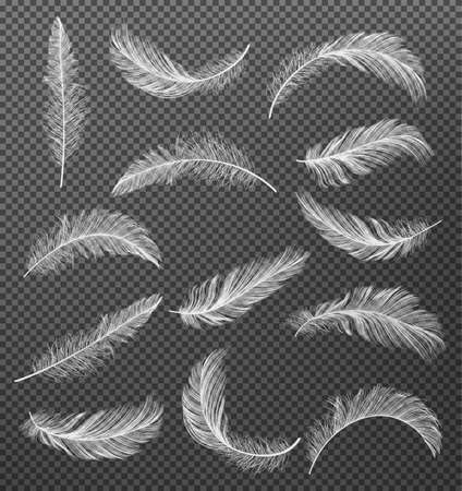 Collection of White Realistic Different Falling Feathers Isolated on Transparency Grid Background. Design Template.