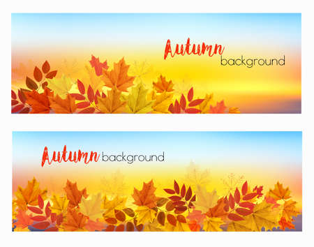 Two abstract autumn banners with colorful leaves and berries. Vector