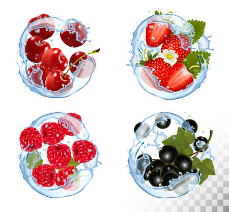 Gran colección de frutas y bayas en un chorrito de agua. Fresa, frambuesa, mora y cereza. Conjunto de vectores