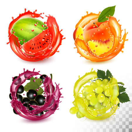 Set di frutta in spruzzi di succo. Pesca, ribes nero, anguria, uva. Vettore