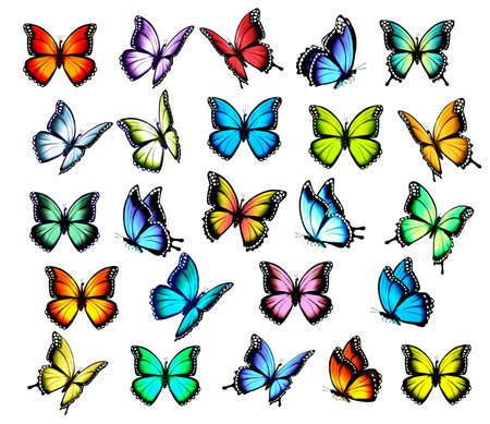 Big group of colorful butterflies, flying in different directions. Vector.