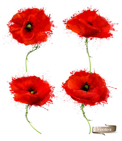 Abstract Red Poppies Flowers. Vector. Ilustracja