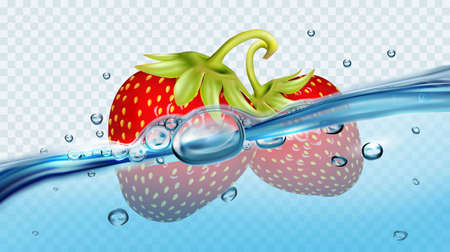 Realistic transparent isolated vector  with strawberries in water splash and drops. Vector illustration