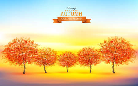 Beautiful autumn nature background with trees and landscape.