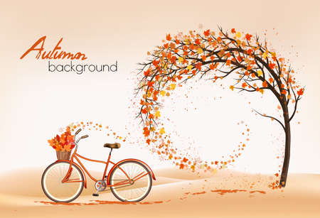 Enjoy Autumn background with tree and colorful leaves.