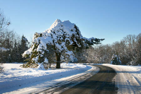 Beautiful empty winter road in a cold sunny day, in a ice heart of Estonia photo