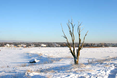 Beautiful winter landscape in a cold sunny day, near city of Tallinn in Estonia. Part of Baltic Sea is frozen.