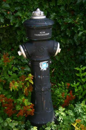 bomba de agua: Bomba de agua negro en el jard�n Foto de archivo