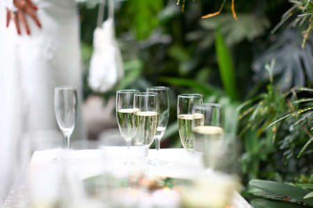 Glasses of champagne at wedding ceremony in botanic garden. Bride with handbag in a background.