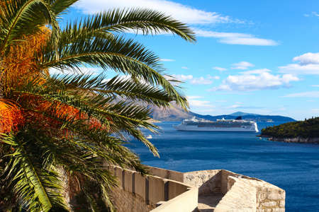 Defense wall of Old town of Dubrovnik in Croatia with beautiful palm and Adriatic sea with cruise ship