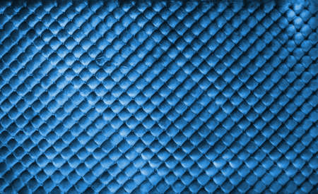 Blue luxury leather buttoned background