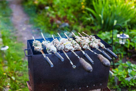 Fresh pork meat  shashlik  with spices and marinade is preparing on grill in fire