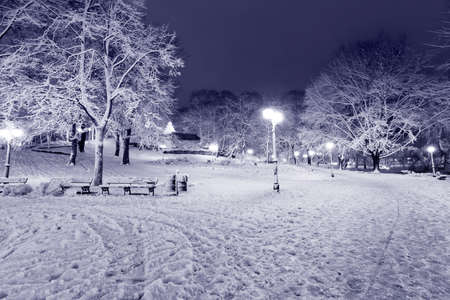 Winter night park in Old Riga, Latvia close to Bastion hill Stock Photo