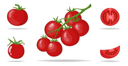 Satz frische rote Tomaten lokalisiert auf weißem Hintergrund. Zweige, ganze, halbe und in Scheiben geschnittene Tomatensymbole für den Markt, Rezeptdesign. Bio-Lebensmittel. Cartoon-Stil. Vektorillustration für Design, Web. Vektorgrafik