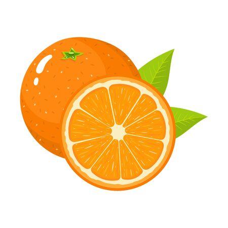Set of fresh whole and half orange fruit with leaves isolated on white background. Tangerine. Organic fruit. Cartoon style. Vector illustration for any design. Vetores