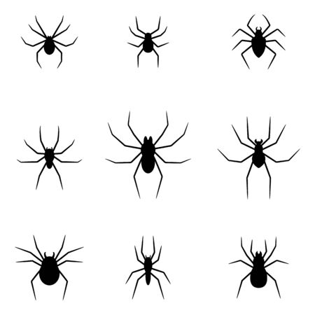 Set of black silhouettes of spiders isolated on white background. Halloween decorative elements. Vector illustration for any design.