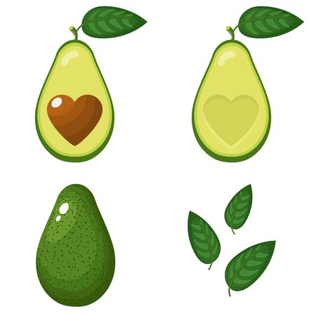 Set of fresh whole, half, cut slice and leaves avocado with heart isolated on white background. Summer fruits for healthy lifestyle. Organic fruit. Cartoon style. Vector illustration for any design.