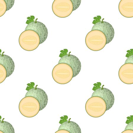 Seamless pattern with fresh whole, half melon fruit isolated on white background. Cantaloupe melon. Summer fruits for healthy lifestyle. Cartoon style.