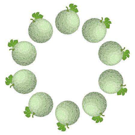 Wreath from green cantaloupe melon with space for text. Cartoon organic sweet food. Summer fruits for healthy lifestyle. Vector illustration for any design.