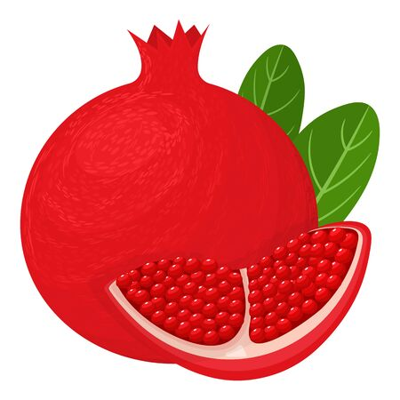 Fresh bright exotic whole and chunk pomegranate with leaves isolated on white background. Summer fruits for healthy lifestyle. Organic fruit. Cartoon style. Vector illustration for any design.