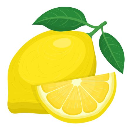 Fresh bright exotic whole and cut slice lemon fruit isolated on white background. Summer fruits for healthy lifestyle. Organic fruit. Cartoon style. Vector illustration for any design.