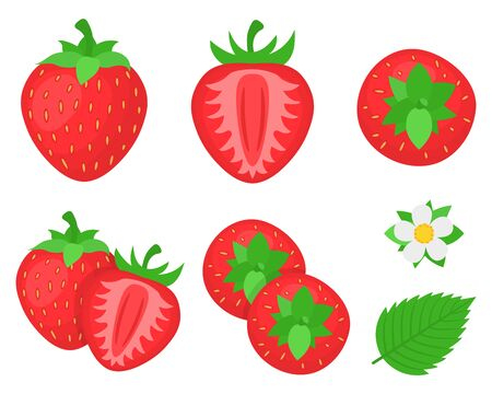 Set of fresh bright exotic whole, half strawberries and flowers isolated on white background. Summer fruits for healthy lifestyle. Organic fruit. Cartoon style. Vector illustration for any design.