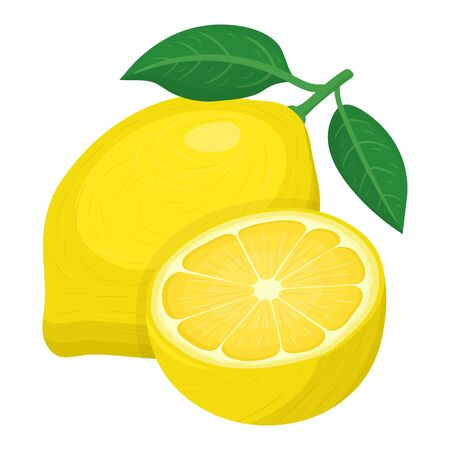 Fresh bright exotic whole and half lemon fruit isolated on white background. Summer fruits for healthy lifestyle. Organic fruit. Cartoon style. Vector illustration for any design.