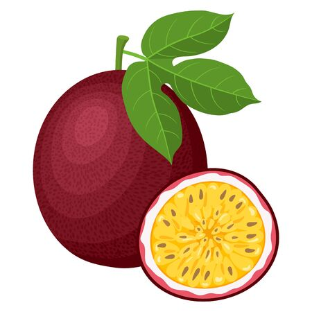 Fresh bright exotic whole and half passion fruits isolated on white background. Summer fruits for healthy lifestyle. Organic fruit. Cartoon style. Vector illustration for any design. Illustration