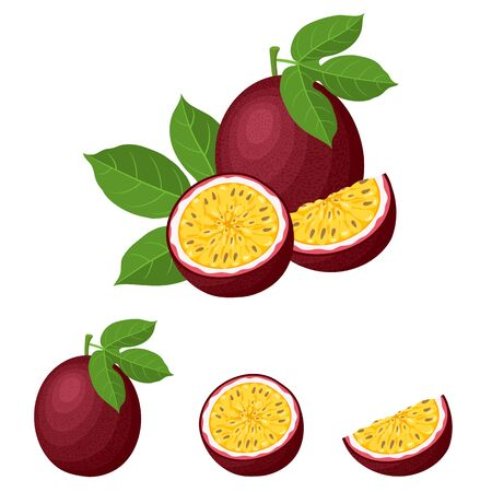 Set of fresh whole, half, cut slice passion fruits isolated on white background. Summer fruits for healthy lifestyle. Organic fruit. Cartoon style. Vector illustration for any design.