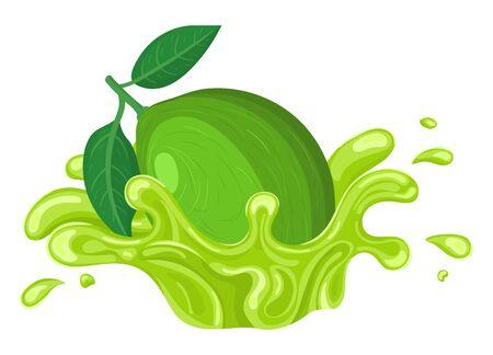 Fresh bright lime juice splash burst isolated on white background. Summer fruit juice. Cartoon style. Vector illustration for any design.