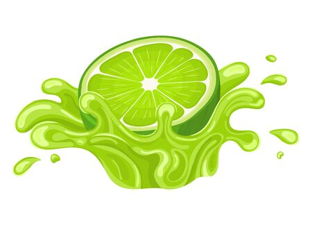 Fresh bright half cut lime juice splash burst isolated on white background. Summer fruit juice. Cartoon style. Vector illustration for any design. Ilustração
