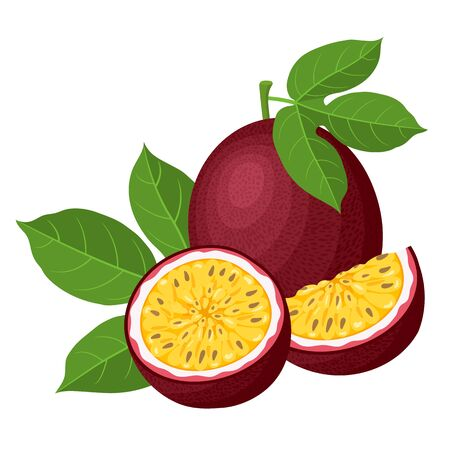 Fresh bright exotic whole, half and cut slice passion fruits isolated on white background. Summer fruits for healthy lifestyle. Organic fruit. Cartoon style. Vector illustration for any design.