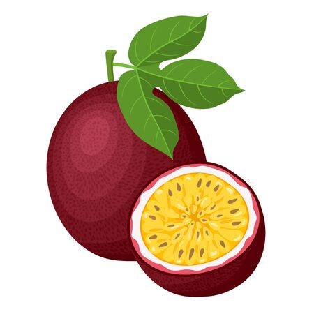 Fresh bright exotic whole and half passion fruits isolated on white background. Summer fruits for healthy lifestyle. Organic fruit. Cartoon style. Vector illustration for any design. Ilustração